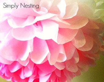 Ombre Pink Tissue Paper Pom Pom, Pink Ombre Wedding Decoration, Valentine Pom Pom, Pink Paper Flowers, Tissue Paper Pom, Nursery Decoration