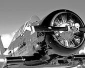 NEW! T6 'Warbird' Trainer Fighter Aircraft in Black and White, Vintage Military 8x10 or 5x7 Photo