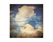 """Bird Photo. Bird on Wire. """"Cloudy Vintage Afternoon"""" Clouds. Blue Sky. Texture. vintage. for the home. white. silver. bird"""