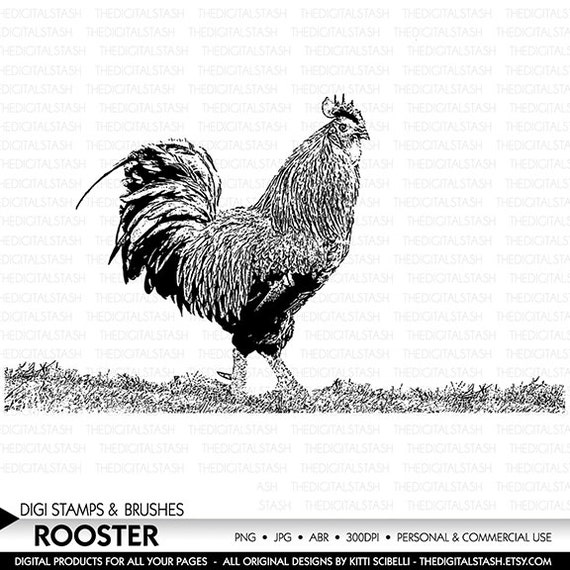 Rooster - Digital Stamp and Brush - INSTANT DOWNLOAD - for Cards, Scrapbooking, Collage, Invites, Crafts and More