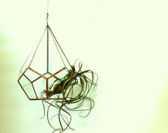 Hanging Terrarium / Copper Teardrop Terrarium / Glass Hanging Planter
