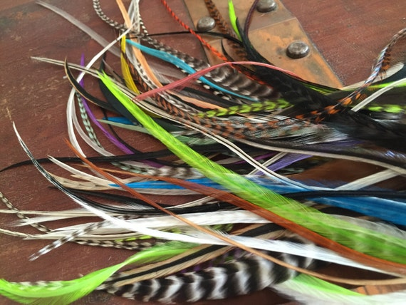 Destash Craft Feathers Mixed Colors, Make Feather Earrings, Scrapbooking, Feather Extensions, Milinary Medium to Long Aprox 60 pcs