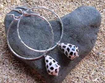 Silver Hoop Earrings, Hebrew Cone Shells, Hammered Hoops, Hawaii Beach Jewelry, Gift for Her, Handmade, Black White Shell, Mermaid Gift Idea