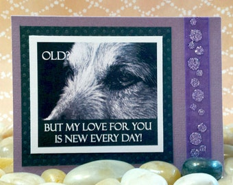 Old?  But my love for you is new everyday  Handmade Greeting Card