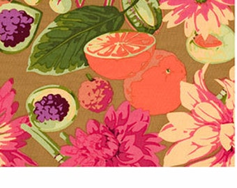 Martha Negley Fruit and Floral Classics in Natural