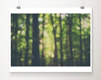 woodland photograph tree photograph surreal photograph surreal art woodland print woodland decor abstract photograph tree print