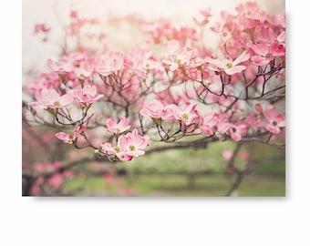 Dogwood print, flower wall art, Pink Flower Photo, floral print, nature art flower photography, cottage home decor, floral art, wall decor