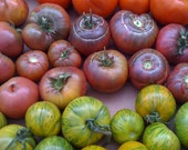 Ideal Heirloom Tomato Collection Rare Seeds