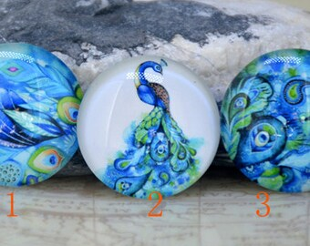 Circle Green Peacock feather Handmade photo glass cabochon dome bead 10mm 12mm 14mm16mm 18mm 20mm 22mm 25mm 30mm Necklace Bracelet Jewelry