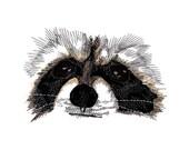 Raccoon Eyes Embroidered Flour Sack Hand/Dish Towel