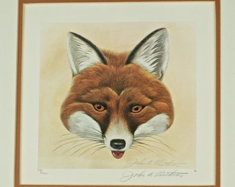 Vintage John A. Ruthven Signed and Numbered Limited Edition Print - 'Fox Masque I'