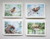 Set of 8 Note Cards - The Secret Garden - 4 Designs (SET TSG)