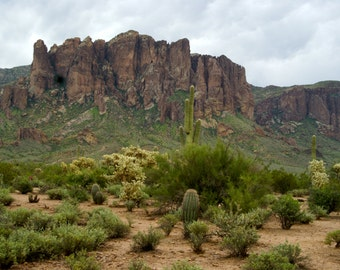The view in the Lost Dutchmen State Park, Apache Trail, Apache Junction Arizona Photo Greeting Card 5x7 blank inside,