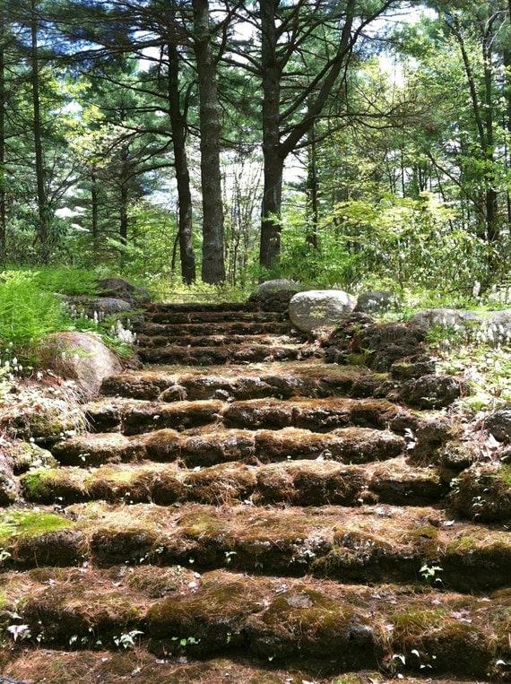 Nature Garden Stairs Attower Hill Botanical Gardens Boylston