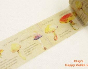 Japanese Washi Masking Tape - Fungus - Colorful - 30mm Wide - 11 Yards
