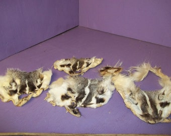 real animal fur Tanned badger face taxidermy head parts fur