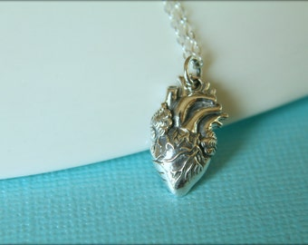 Anatomical Heart Necklace, Available in Sterling Silver or Bronze and Gold Filled