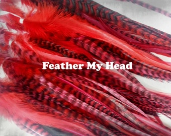 """15 Pc Wide Accent Feather Hair Extenions 7"""" to 11"""" Inches Long Red Pack"""