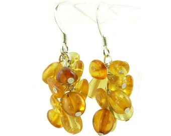 Natural Baltic Amber and Sterling Silver Cluster Dangle Earrings - Lightweight Earrings  -  Artisan Jewelry