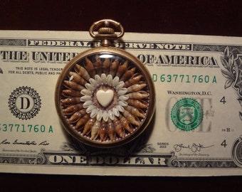 Pocket Watch Sea Shell Pendant
