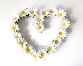Daisy flowers  wreath , Heart wtreth ,Daisies  decoration,White Daisy Wreath, summer Wreath, Front Door Wreath
