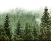 Mountains, Cascades, Washington State, Green, Clouds 8 x 10 Fine Art Photography