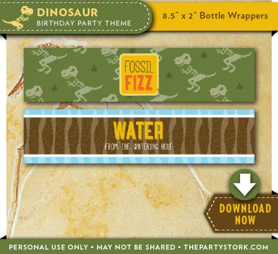 Dinosaur Water Bottle Labels Wrappers Printable Dinosaur