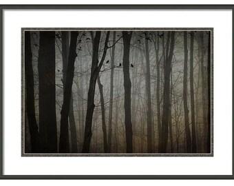 Mysterious Forest Art, Dark Woods, Flock of Blackbirds, Flying Blackbirds, Blackbird Decor, Dark Art, Fine Art Photography