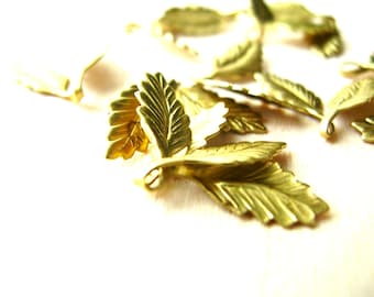 12 Small Raw Brass Leaves - Leaf Stampings - Leaf Findings - Brass Findings