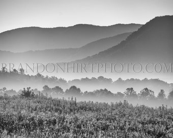 Cades Cove Morning Great Smokey Mountains National Park Black and White Landscape Photography