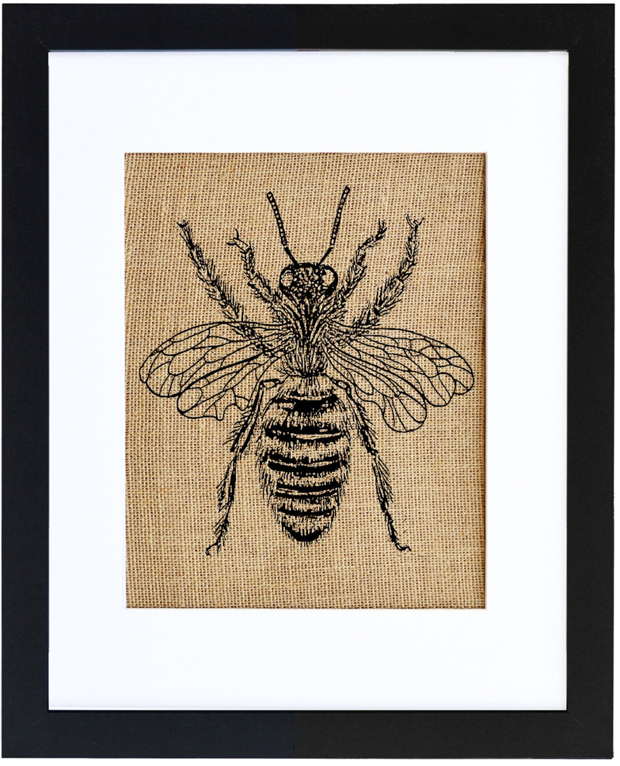 Honey Bee Framed Print Burlap Print Bee Art Bee Drawing