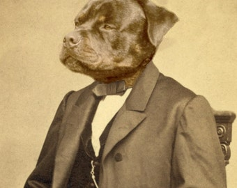 Your pets turned into old time photos