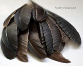 Feather 2-4 inch Small flight Black Brown Highlight 14 count