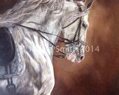 "Nicole Smith Artist Horse Art Original Equine Giclee reproduction high quality print ""Andalusian Templado"" 14x14"