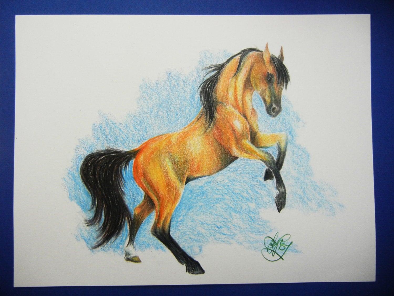 art ala carte how to draw a horse