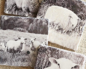 Sheep Decor- Coasters, Sheep Gift, Farm Decor, Farm Gift, Lamb Decor, Lamb Gift, Farm Animal Decor, Farm Animal Gift, Sheep Tile