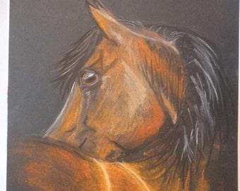 Brown Horse Drawing by Laura Hundsdorfer Original Drawing Pastel Chalcoral