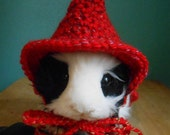 Little Red Riding Hood Guinea Pig Halloween Costume, Guinea Pig Sweater, Crocheted Cape for Guinea Pig, Tiny Pet Clothes, Guinea Pig Outfit,