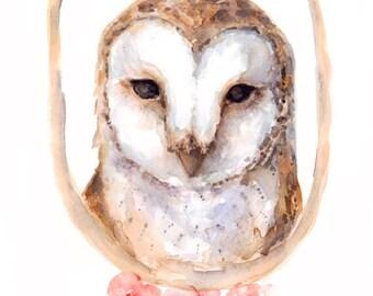 Owl - Print - 8 x 10