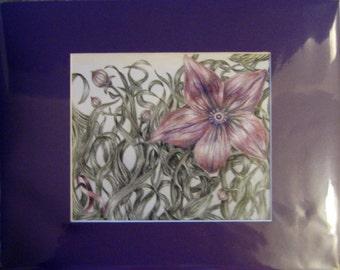 "8x10"" Purple Flower (Pancreatic Cancer)"
