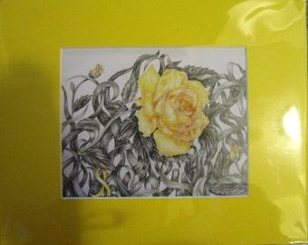 "8x10"" Yellow Flower (Bone Cancer)"