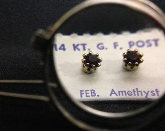 Vintage 1960's 14Kt GF Post Birthstone Earrings - FEBRUARY (ABX1D)