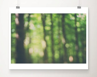woodland photograph nature photography tree photograph abstract art green home decor woodland decor tree print forest photograph