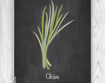 Chive herb Culinary Art Print, Chalkboard Kitchen Art Print, Kitchen Herb Art Print, Kitchen Herb Poster, Kitchen Decor Art Print or Canvas