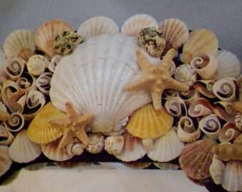 Large Starfish Seashell Coastal Beach Cottage Boho Hall Wall Unique Mirror