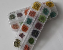 On sale  imperfect 50 pc 12 colors tiny dried flowers kit  set for glass bottle vial tube filled
