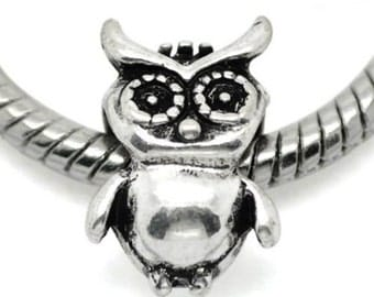 European Charm Bead For All Large Hole Charm Bracelet And Necklace Chain. Wise Owl . Animal Collection 10x15mm