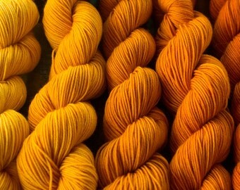 Honey Honey Angus Gradient Yarn Set 5 x 50g SW Merino and Nylon