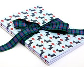 Three premium quality, eco-friendly Notebooks, A5 size.