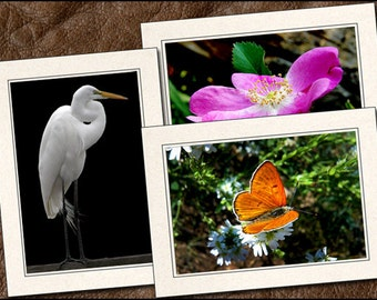 3 Nature Photo Note Cards - Nature Note Cards - 5x7 Nature Cards - Blank Note Cards - Nature Greeting Cards (NA2)
